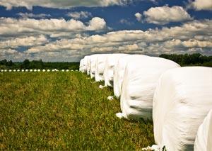 Agricultural Plastics