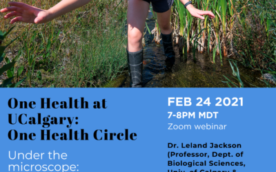 One Health Circle – Under the microscope: Microplastics in our environment and policies for action on all plastics